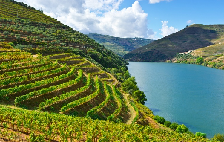 wijnvakantie-portugal-femfem