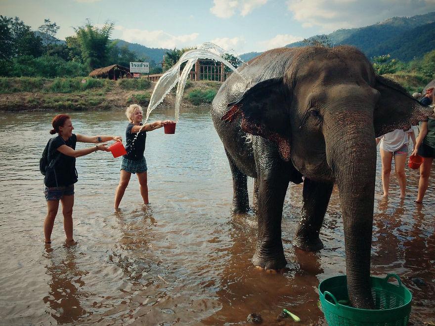 olifantenverblijf-femfem