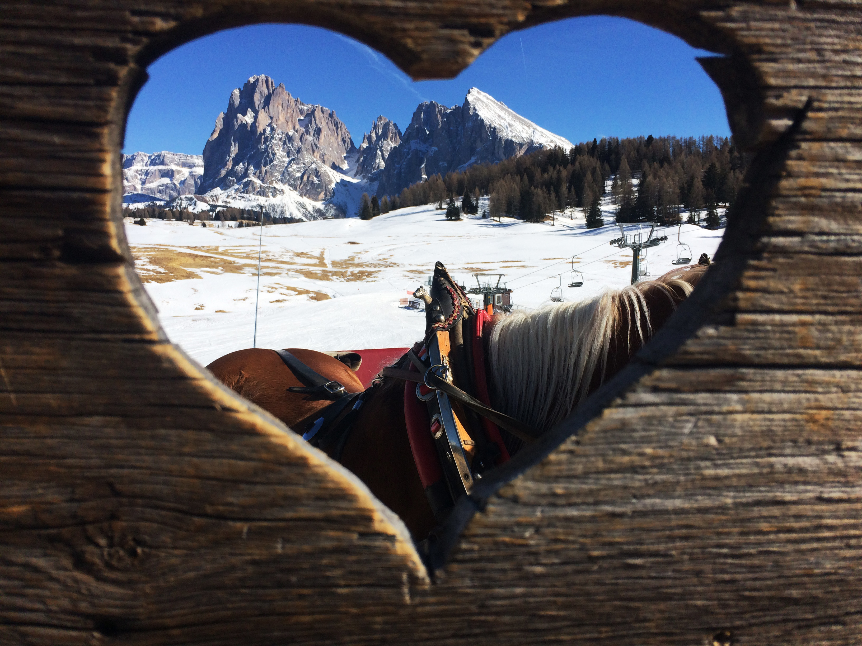 sudtirol-hart-berg-femfem