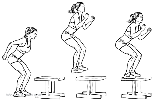 boxjump-buikspieroefeningen-oefeningen-femfem