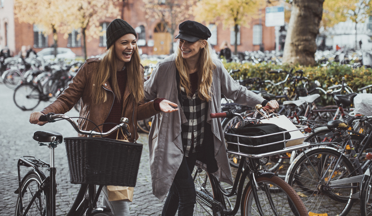 fiets-gestolen-femfem