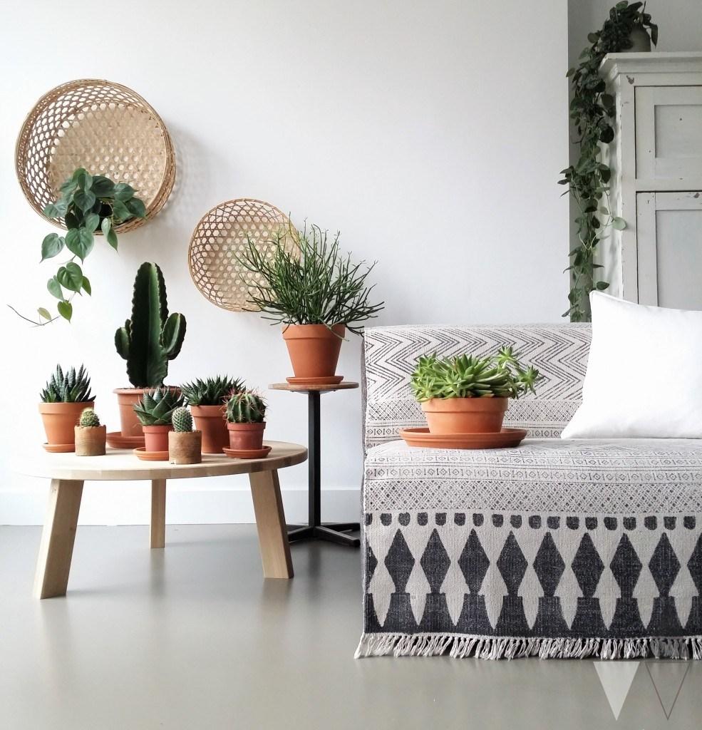 botanisch-interieur-planten-femfem