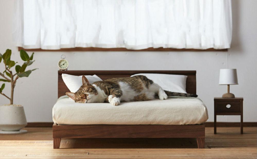 Miniatuur Design Meubels : Deze mini meubels gemaakt voor katten geven je kat een eigen
