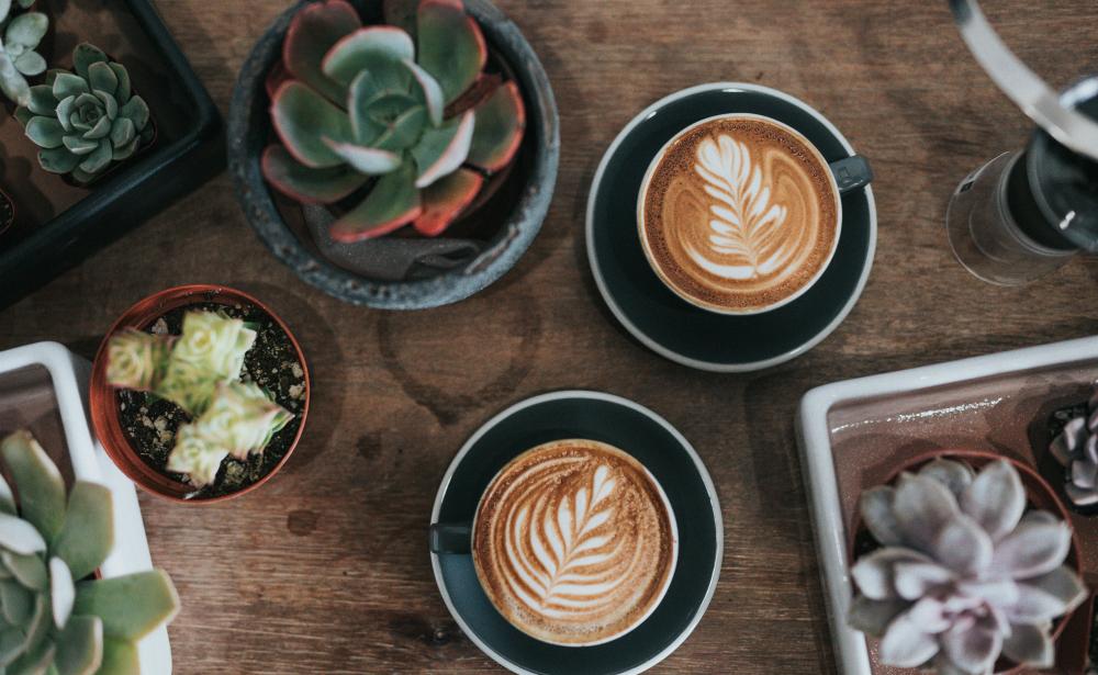 groente koffie femfem