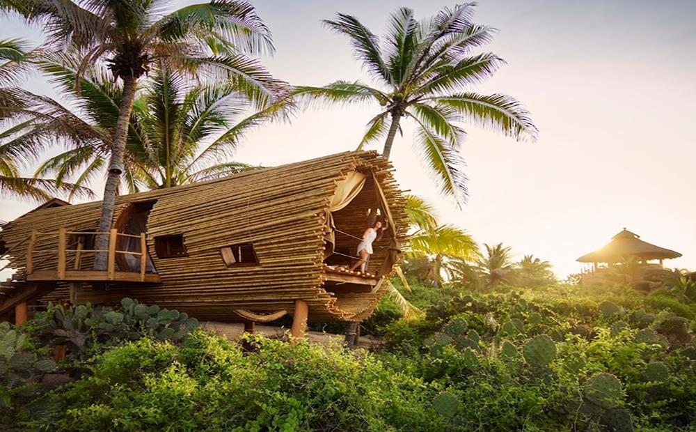 De Magische Boomhut : De meest toffe boomhutten die je kunt huren via airbnb fem fem