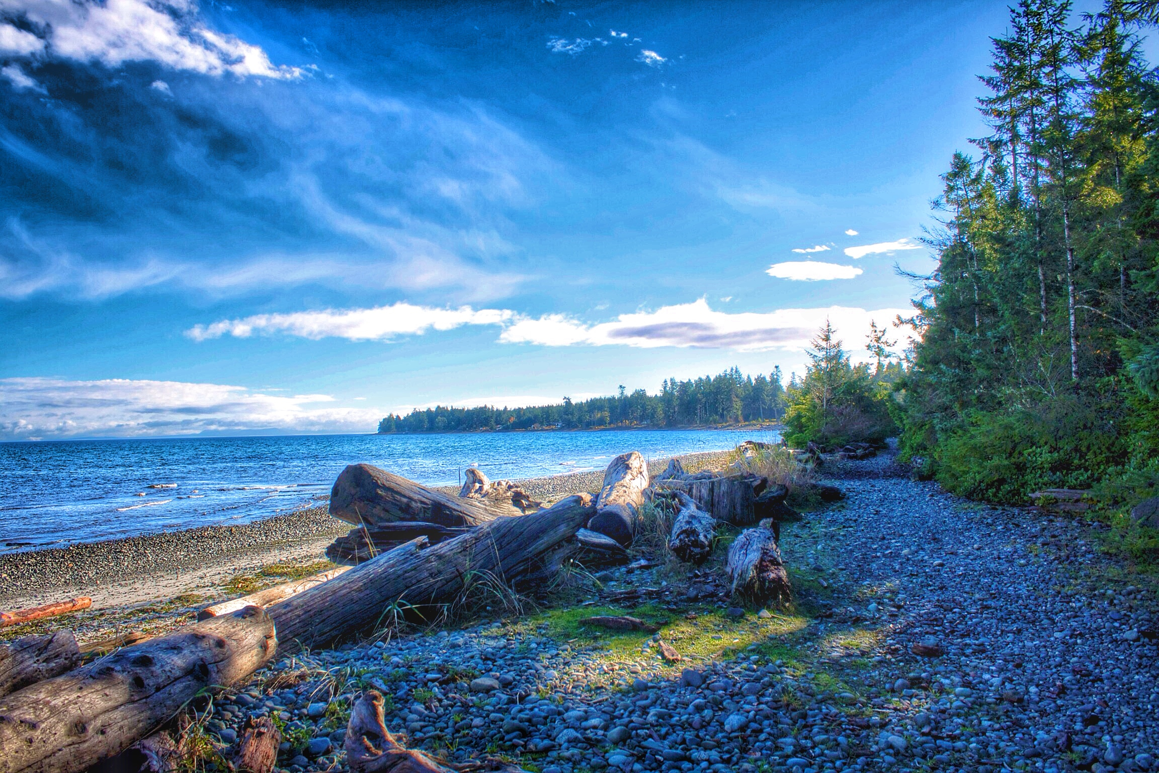 Afternoon at a Beach in Northern Vancouver Island
