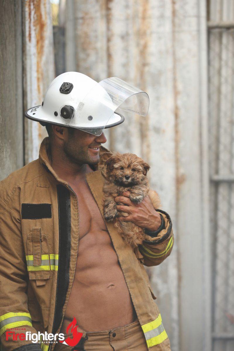cale-puppy-calendar-australian-firefighters-calendar-1508529298