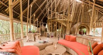 Deze unieke Airbnb's maken van je reis een complete beleving