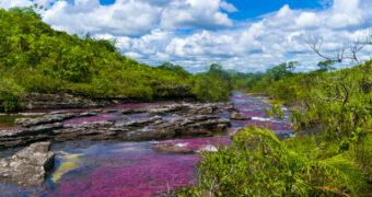 Deze regenboogrivier in Colombia wordt beschouwd als de mooiste rivier ter wereld