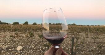 Wijnreis Ribera del Duero: rondtrekken door een Spaanse wijnstreek
