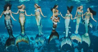 Je kunt nu solliciteren om full-time zeemeermin te worden