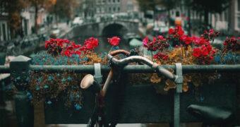 #11 Soof: Gewend in Amsterdam