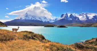 Het walhalla voor natuurliefhebbers: Patagonië