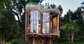 Wil je naartoe: deze boomhut in Zuid-Afrika is waanzinnig