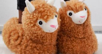 De musthave voor de herfst: alpaca sloffen