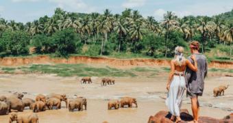 Sri Lanka: een prachtig land voor een mooie rondreis