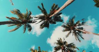 Karimunjawa: het paradijs van Indonesië