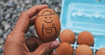 Tussendoortje bij Pasen: gevulde eieren met avocado