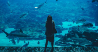 Eerste onderwater restaurant geopend in Europa