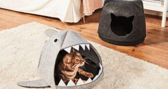 Je hebt het eigenlijk niet nodig, maar toch wil je het: een haaien kattenmand