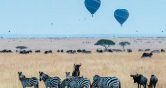 Een overnachting om nooit te vergeten: slapen tussen de wilde dieren in Kenia