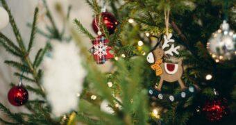 Kersttrend 2019: een kerstboom gemaakt van lege wijnflessen