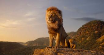 Onze 7 favoriete titels op Disney Plus
