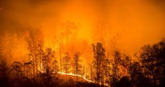 natuurramp australie FEM FEM