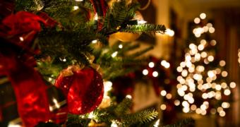 Waarom het helemaal oké is om je kerstboom tot februari te laten staan