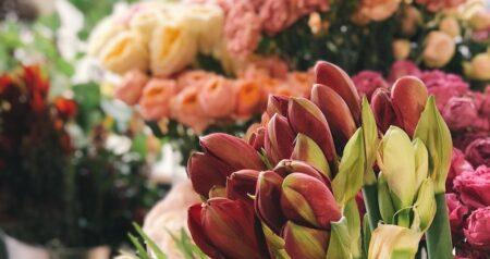 bloemenover-bloemen-kopen