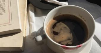 koffie fem fem